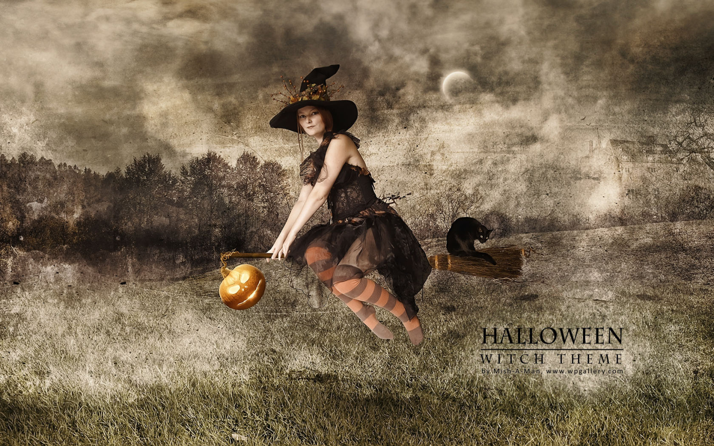 Halloween - Witch theme for 1440 x 900 widescreen resolution